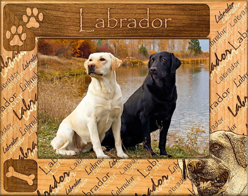 Dog Picture Frame - Labrador, Dog Picture Frame - wooden photo frames